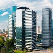 Parque da Cidade - Torre Jequitibá